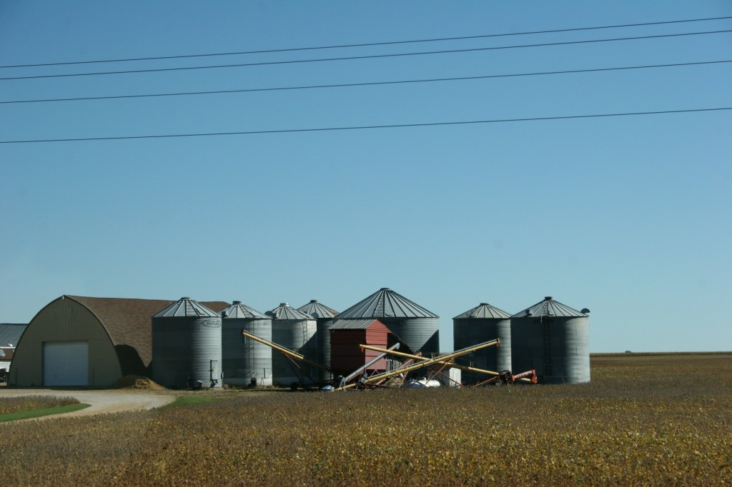 Grain bins await the harvest on a southwestern Minnesota farm.